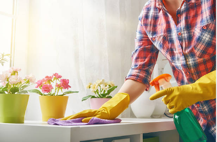 Servicio doméstico: se homologó el incremento salarial desde junio de 2017