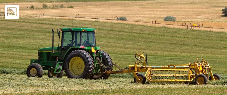 trabajador rural - celebración - campo - agro - TRABAJO AGRARIO - CNTA